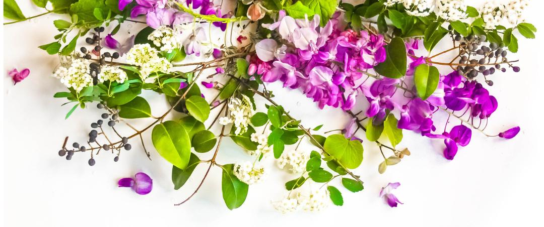 Blumen Frühling